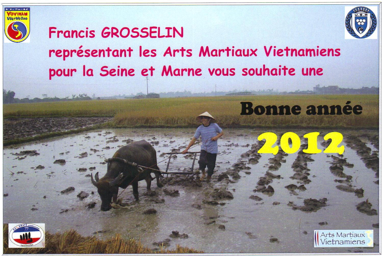 viet-vo-dao-seine-et-marne-77-francis.JPG